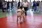 judo-bem-chemnitz-137