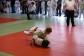 judo-bem-chemnitz-141